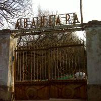 """Ворота дома отдыха """"Авангард"""", Лукино"""
