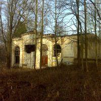Усадебный дом в Воздвиженском, Лукино