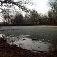 Усадебный пруд в Воздвиженском, Лукино