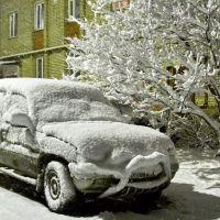 Зимняя весна, Луховицы