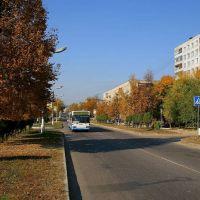 улица Жуковского в г. Луховицы, Луховицы