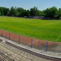 Центральный Луховицкий стадион СПАРТАК, Луховицы