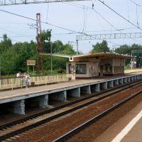 Платформа, Львовский