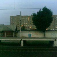 Вид с ж/д платформы Львовская. Август 2010., Львовский