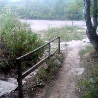 Ступеньки ведущие к пруду, Львовский