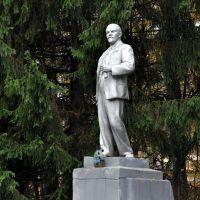 Ленин, Львовский