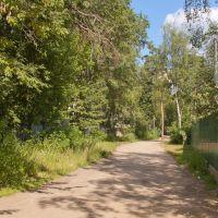 Вид с улицы Центральная, Малаховка