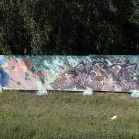Граффити вдоль дороги.НАЧАЛО..., Малаховка