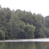 Берег озера., Малаховка