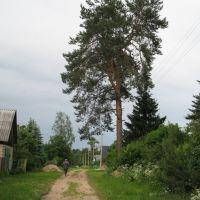 Деревня Лычёво, Михайловское