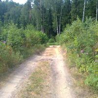 Начало крутого спуска, Михайловское