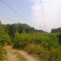 Каньон, Михайловское