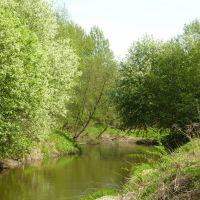 Речка Торгоша поздней весной, Михайловское