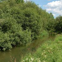 Река Торгоша, Михайловское