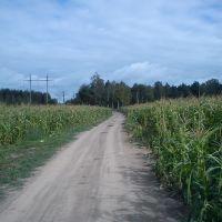 2011-09-04, Михайловское