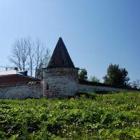 Можайск. Лужецкий Ферапонтов монастырь. Фрагмент стены, Можайск
