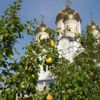 В монастырском саду, Можайск