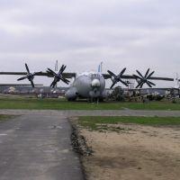 An-22, Монино