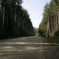 Дорога Муханово-Титовское_1, Муханово