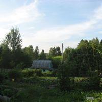 Банька, Муханово