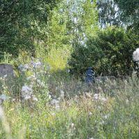 Остатки надгробий на территории разрушенной Успенской церкви в Муханово, Муханово