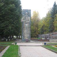 Мемориал войнам погибшим в годы ВОВ / Memorial victim in days of Second World War, Нарофоминск