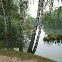 Институтский пруд, Нахабино