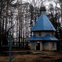 Храм Владимирской иконы Божией Матери  в парке, Нахабино