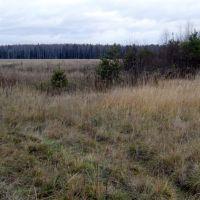 Место истока реки Поля, Некрасовка