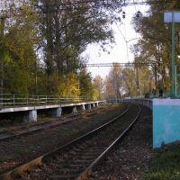 Здесь живет известный паровозик :). Платформа Ромашково., Немчиновка