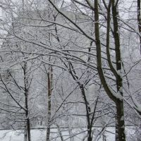 Зима, Немчиновка