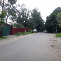 Советский проспект, Немчиновка