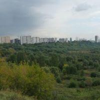 Сходненский ковш (сентябрь 2010), Новобратцевский
