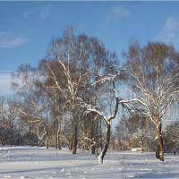 Winter in Moscow (Park Mitino), Новобратцевский