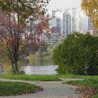 Penyaginskiy pond, Mitino, Moscow, Новобратцевский