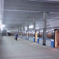 Станция Мякинино, Новоподрезково