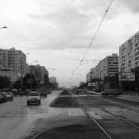 Улица Кулакова, Новоподрезково