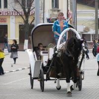 местный транспорт, Ногинск