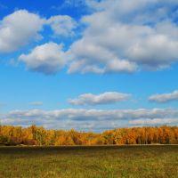 sunny autumn day, Ожерелье