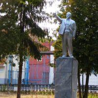 Памятник Ленину, Озеры