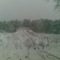 Близ платформы Аникеевка, Опалиха