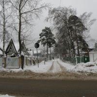 Опалиха. Челюскина улица. Cshelyuskina street, Опалиха
