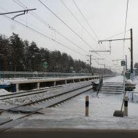 Платформа Аникеевка. Rail station Anikeevka, Опалиха