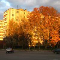 Осенний вечер. Ул. Ленина, д. 56., Орехово-Зуево