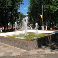 фонтан в парке, Павловский Посад