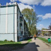 Улица Герцена, Павловский Посад