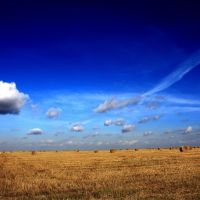Осеннее поле, на озерской ветке, Первомайский