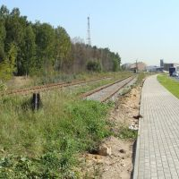 Мытищинский район, Московская область, Пироговский