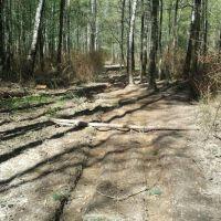 Квадроциклы портят дороги и тропы, Пироговский