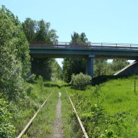 Клинский район, Московская область, Полушкино